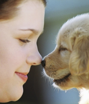 nose to nose with puppy