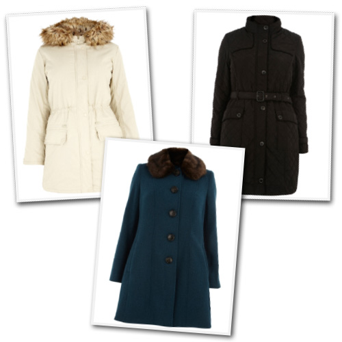 Plus size coats from Evans UK.