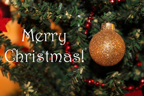 Merry Christmas from Moe at PlusShe.ca