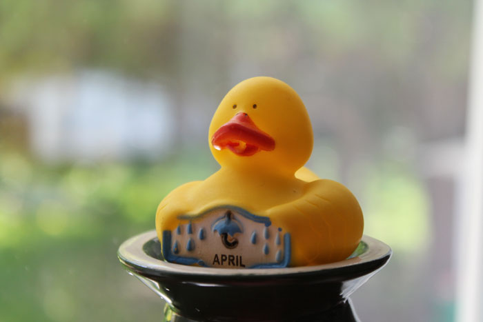 Adorable April rubber duck. The first for our collection.