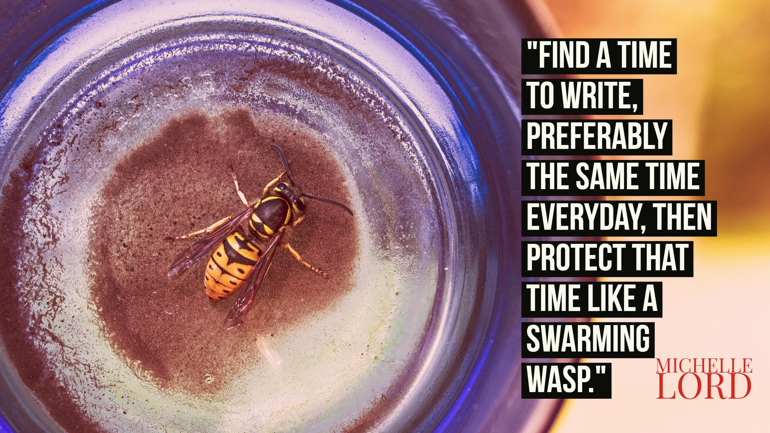 Quote: Find a time to write, preferably the same time everyday, then protect that time like a swarming wasp. ~ Michelle Lord