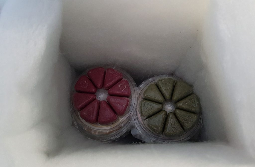 Evive Smoothie cubes in insulation.